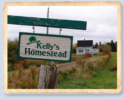 Kelly's Homestead sign on route 218, PEI